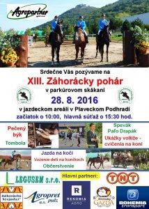 ZP_Plagat_2016